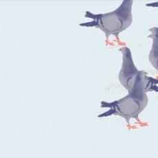 The Birds | Digital Technique